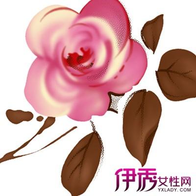 【简单易画的花朵图案】【图】简单易画的花朵图案