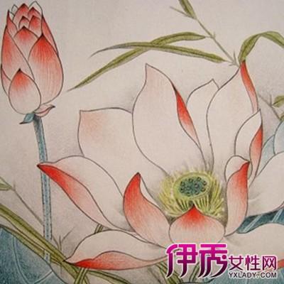 【简单风景彩色铅笔画】【图】简单风景彩色铅笔画
