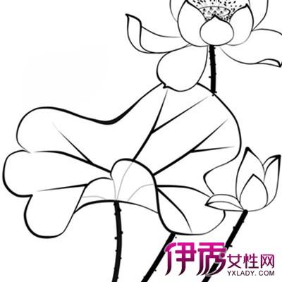 【图】简单好看彩铅画蝴蝶篇 促进儿童智力发展