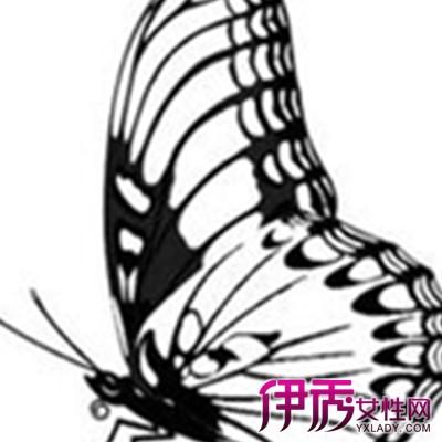 蝴蝶风筝简笔画大全图片欣赏 简单线条下的美丽世界