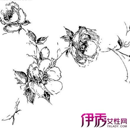 【图】黑白手绘花朵图片欣赏 以下4点手绘要点告诉你