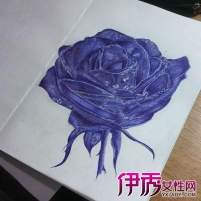 【图】蓝色妖姬手绘步骤介绍 在无聊的时候学学画画