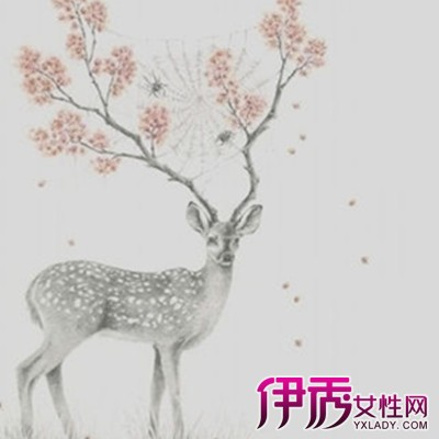 【图】麋鹿手绘图片大全 手绘的分类与技术手法大揭秘