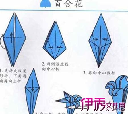 【折纸大全花】【图】折纸大全花朵图