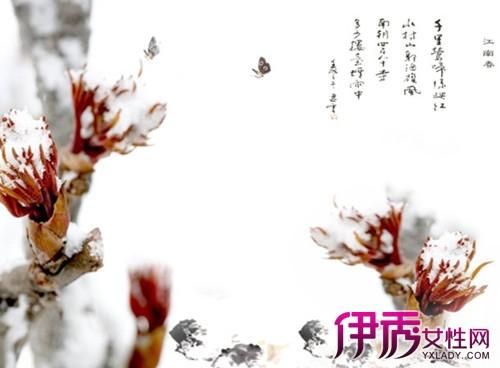 【冬天雪压梅花】【图】冬天雪压梅花的诗句有哪些?