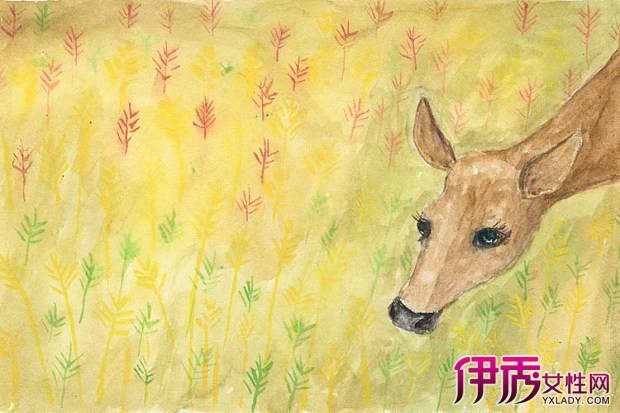 森林手绘黑白鹿插画