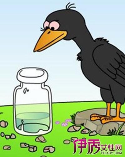 乌鸦喝水的简笔画 第10张图片