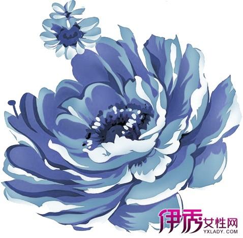 【图】牡丹花图片简笔画步骤