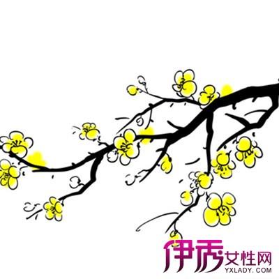 【图】梅花简笔画图片大全 详解梅花种植方法-梅花简笔画大全