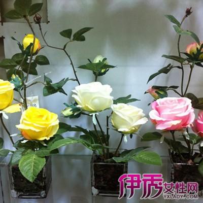 烧纸莲花盆的叠法视频展示