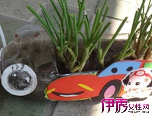 【自制花盆教程】【图】自制花盆教程介绍