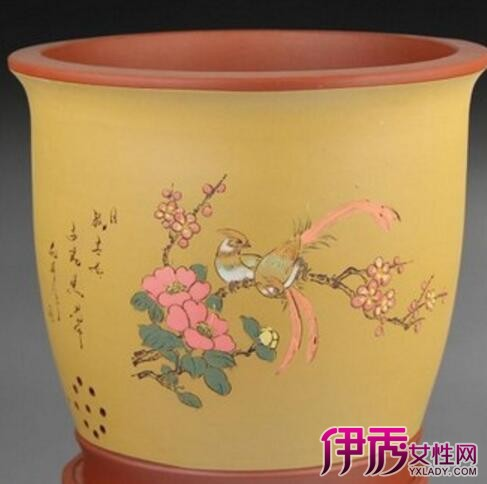 老紫砂兰花盆图片分享 为你揭晓兰花种植的小秘密图片
