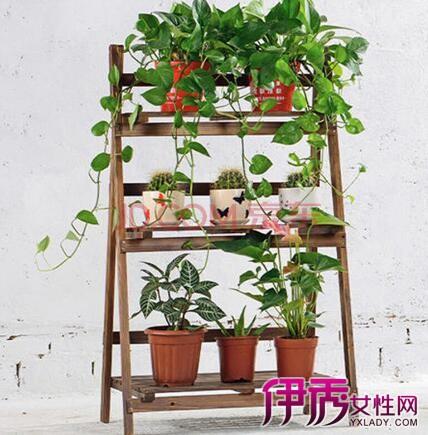 【自制花盆架】【图】如何自制花盆架呢