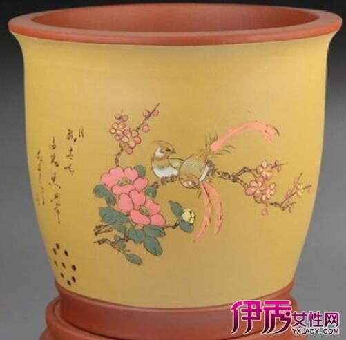 宜兴紫砂盆景花盆PK兰花盆 兰花种植的小秘密图片