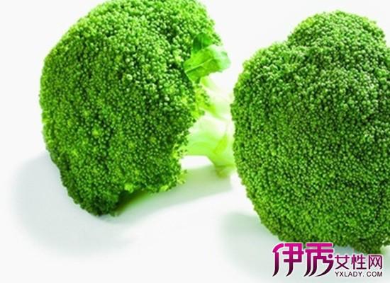 蔬菜的种植方法和步骤_一年四季可以种的蔬菜