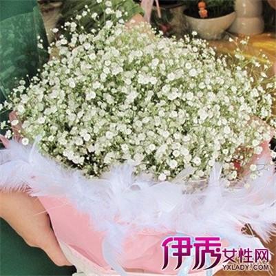如果用报纸包,报纸吸水后会捂烂满天星的小花,也有用塑料纸包装的.图片