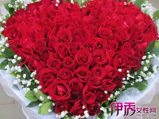 【图】心形红玫瑰花图片 红玫瑰代表的爱的宣言你知道吗?