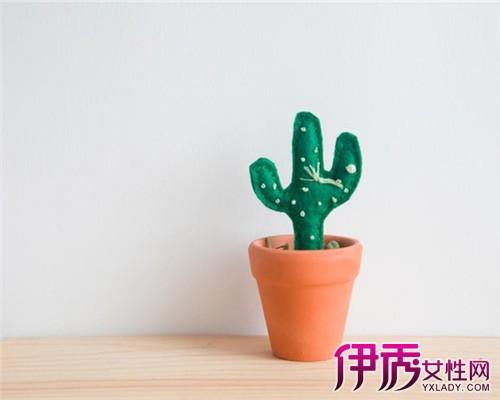 【图】diy仙人掌盆栽针插 让你轻松体现生活品质