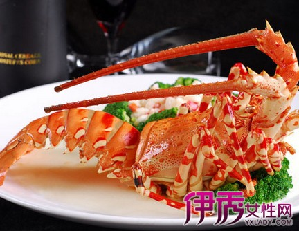 【大龙虾多少钱一斤】【图】大龙虾多少钱一斤