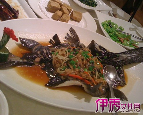 【图】最新鸭嘴鱼的做法 让你在家轻松制作