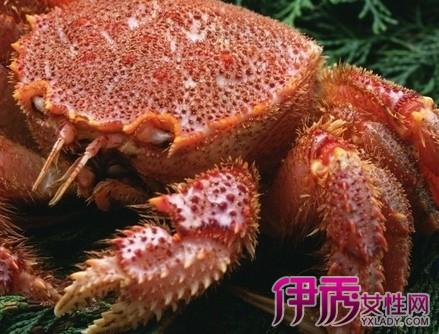 揭秘螃蟹怎么分辨公母 螃蟹小知识介绍图片