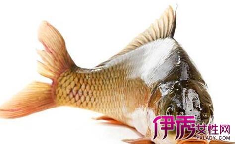 【图】鲤鱼仔如何吃 4个简单步骤介绍