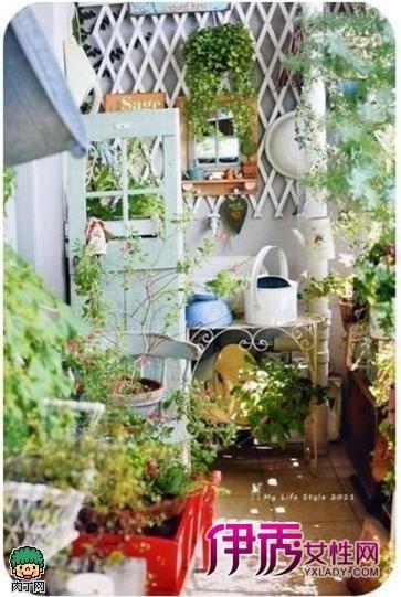 北方平房庭院设计实景图