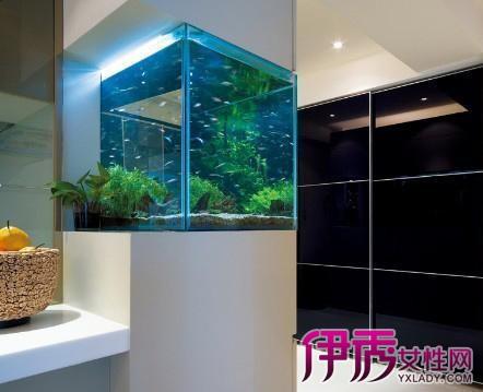 【图】家装玄关鞋柜带鱼缸效果图 家居和风水的有机融合