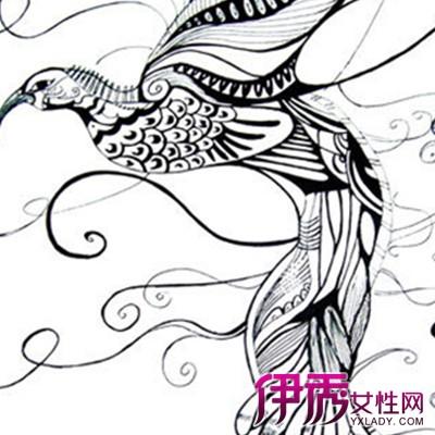【花卉创意黑白装饰画】【图】最新花卉创意黑白装图片