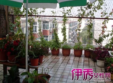 入户花园的装修可以带入任何家庭里,不分楼层,不分地点,在家中就可以