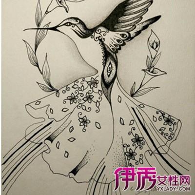 【黑白花卉线描装饰画】【图】黑白花卉线描装饰画