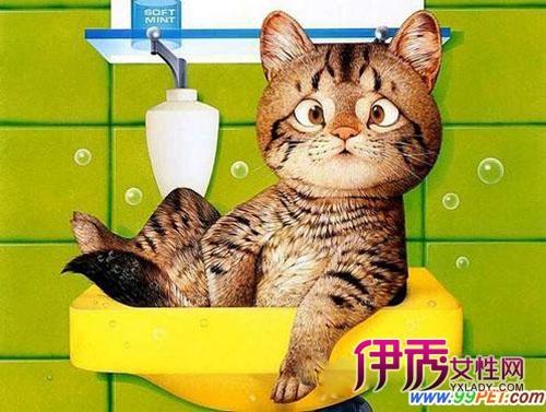 可爱猫咪美术图片大全