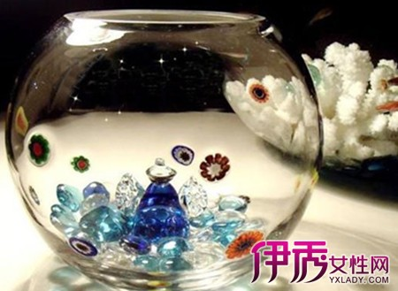 【小鱼缸怎么过滤鱼粪】【图】小鱼缸怎么过滤
