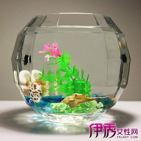 【玻璃鱼缸设计图】【图】玻璃鱼缸设计图