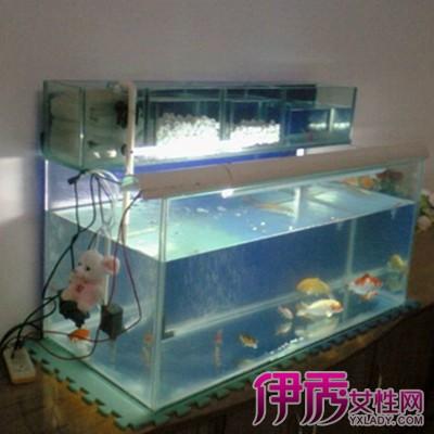 大型鱼缸过滤系统展示_设计图分享