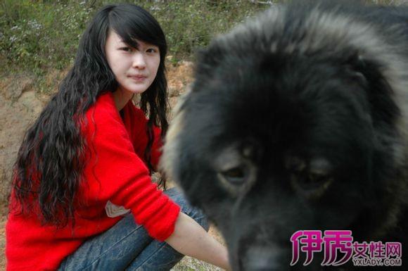 现今中国上最大的藏獒