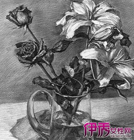 手绘简单花卉黑白素描图片