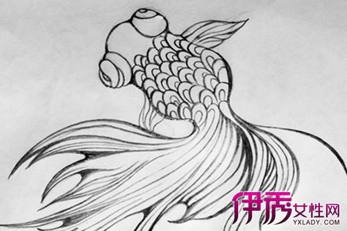 【图】金鱼的简单素描图片展示 6大技法种类你知多少-金鱼的简单素描图片