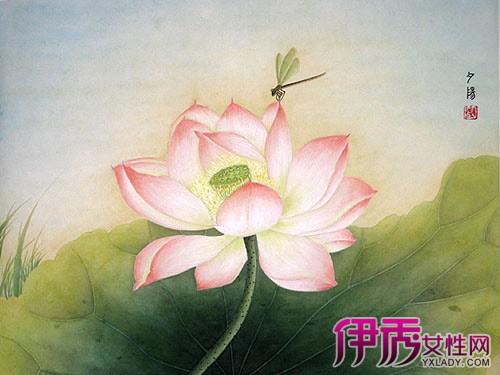 图片展示 中国工笔画入门技法你懂吗-工笔静物花卉