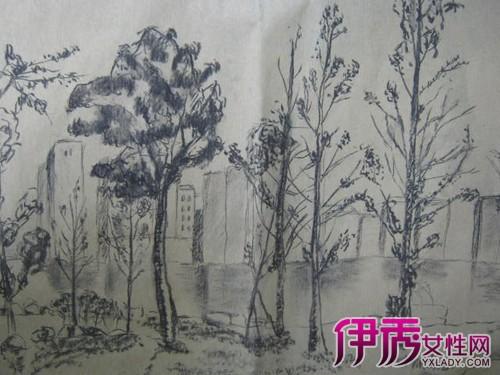 【图】树素描图片欣赏 素描教程之树干树叶的速写画法-树素描
