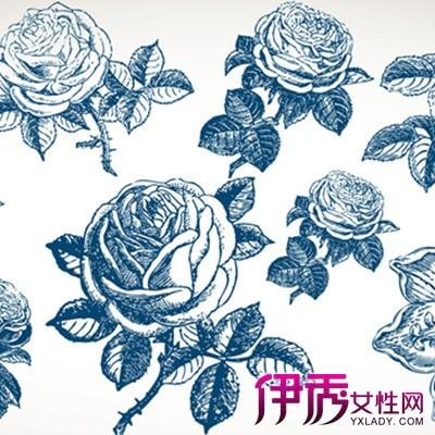 【图】简单唯美花花朵素描图片欣赏