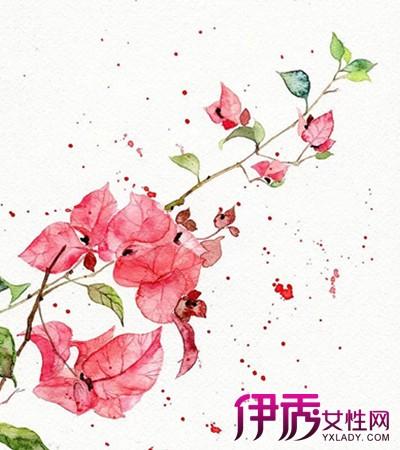 【图】简单好看的手绘封面图片展示