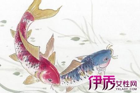 【图】动物手绘图片展示