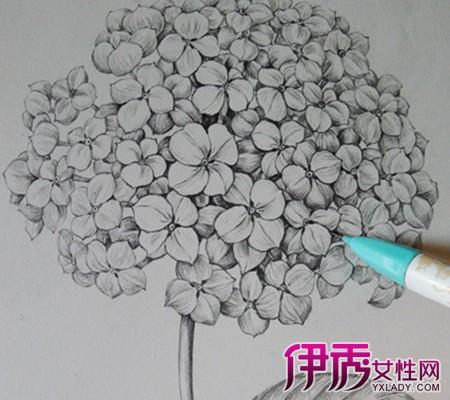 【图】看手绘花朵图片铅笔画 三大方面详细为你介绍铅笔画