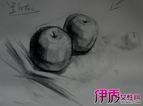 素描水果画法图片