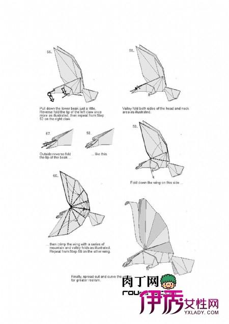 用扑克牌折纸盒的方法图解过程图片下载; 主题:老鹰冲进水中捕鱼反被