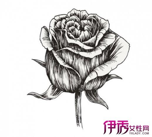 在日常生活中,人们将蔷薇属一系列花大艳丽的栽培品种(rose)统称为玫瑰,成为爱情的象征。今日世界上最常见的杂交玫瑰(Rosa hybrida,亦称现代蔷薇或现代月季)主要是数百年来由许多种蔷薇属物种及育种杂交所诞生的成品。特别是来自月季亲缘的长花期,四季开花,枝条主要向上生长与花序突出开放於植株顶部等特性。 今天我们将一步步学习如何绘制逼真的玫瑰花蕾。 首先,我们先画一个轮廓草图,即,勾勒出玫瑰花蕾的大致形态。 1。画一个简单的轮廓,用中硬铅笔(HB)。该图形必须是椭圆形,像一个竖立的鸡蛋。线条可以画