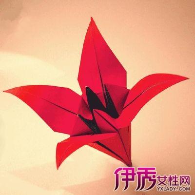 花折纸大全图片图片