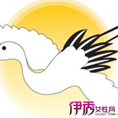 】欣赏鹤卡通手绘图片 教你绘画前的准备-鹤卡通手绘图