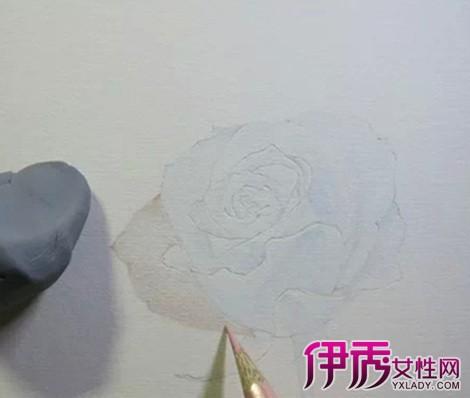 素描玫瑰花画法步骤图片